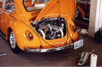 Orange Bug (Back)