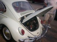 bug out pictures