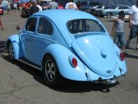 bug-o-rama