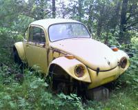 Old Baja Bug