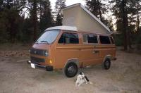 My new 84 Westy after 2 full days detailing