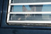 Breadloaf Westy slatted window in a Vanagon