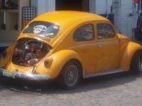 Puerta vallarta beetle3