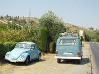 First seen bug in Czarnogora