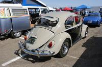 Bug Hatch