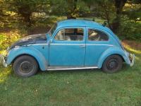 "my ""new"" 58 beetle"