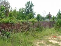 Junkyard fence, complete w/ lots of briar...