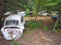 more resting VWs