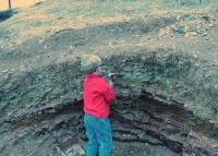 Digging in Fossil