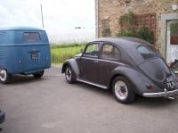 My 52 beetle and 51 panelvan