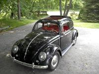 55 bug front