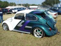 Beetle with wing