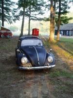 my bug