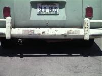 Split bus exhaust