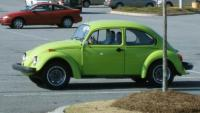 My 74 Lovebug