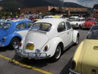 Pearl White 1966 VW1300
