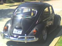 Stolen 1964 bug-Whittier, CA