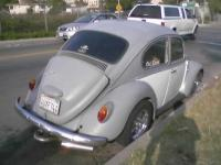 1967 vw just stolen 2/21/08