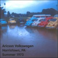 Beetles in the Rain - Summer 1973