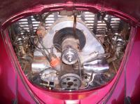 Pele Bug Motor/ Hawaii