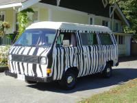 Zebra Vanagon