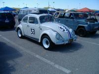 bug show