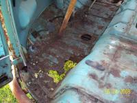 Rust on my new 61 standard...