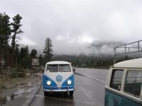 In the Rain from Bug O Rama 08
