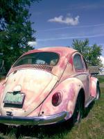 62' bug...