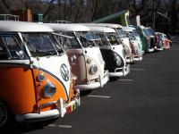 murphy show,ca. bus line up