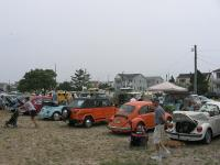 Bugs and Buses By Barnegat Bay 2008