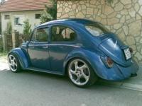 Hungary Bug