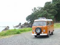Shelly Beach & Coromandel NZ