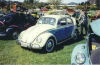 2-Tone Beetle