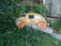 Garden Pinwheel Beetle