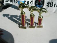 Hotwheel Races