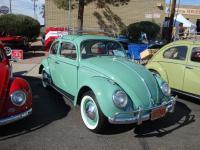 Turkis Beetle