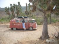 Artsy shot south of Prescott, AZ