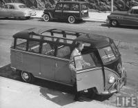 Vintage Barndoor , bug