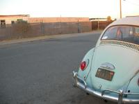stolen 65 beetle in phoenix