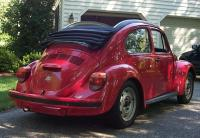Mexican Roll Top Bug
