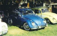 Another Lowered Beetle