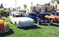 Squareback and an Oval