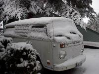 snow buses