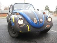My bug Heidi