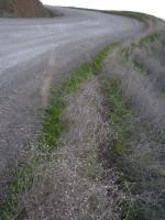 2009 SST mishap - exit point
