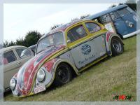 European Bug-in 2008