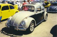 Another 2-tone Beetle