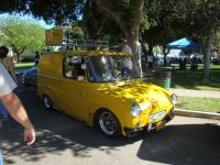 Yellow Fridolin
