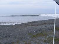 surf trips